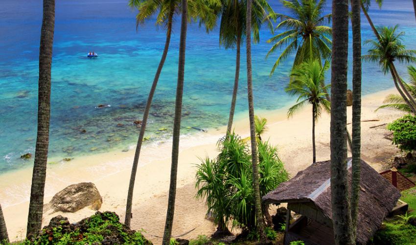Rejse til Sumatra, huse gemt bag palmer