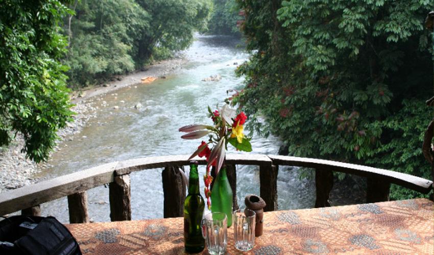 Rejse til Sumatra, terasse med jungle udblik